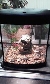 Aqua 320 fish tank 28 litres full tropical set up
