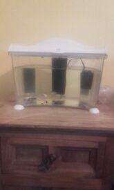 7 litre beta fish tank