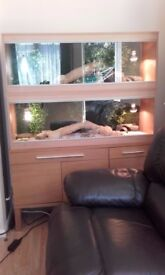 2 bearded dragons plus 2 complete set-ups, includes all you see in the pics
