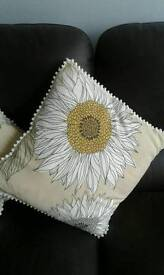 Pair of lovely Next cushions