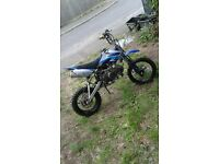 125cc pitbike very fast