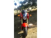 Honda MSX 125-E Motorcycle in Red