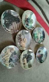 Labrador plates