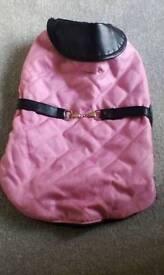 Gorgeous dog jacket