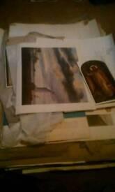 Joblot of vintage prints & paintings