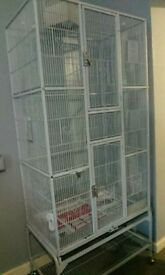 Large parrot, rodents cage