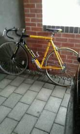 Claude butler race bike