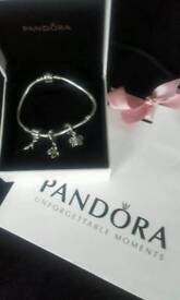 Beautiful Genuine Silver Pandora Braclet and Charms