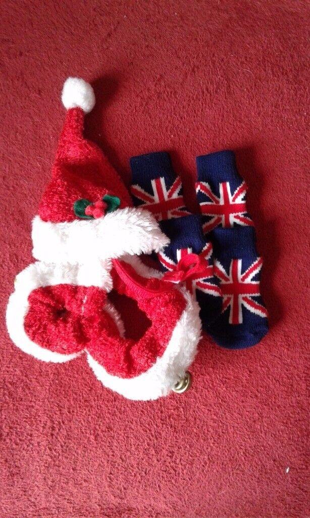 Dog socks and xmas collar and hat