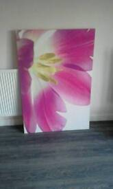 Large wall canvas pink flower