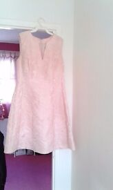Pink dress & Feathered cape
