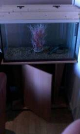 2 & 1/2 ft reptile/fish tank with stand