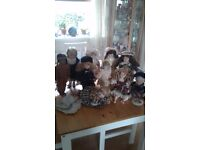 Collection of china dolls