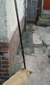 2 TFG delta Xs carp rods