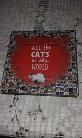 ALL THE CATS IN THE WORLD PHOTO BOOK