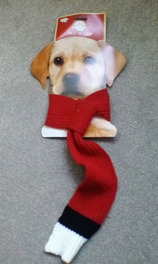 Dogs winter scarf