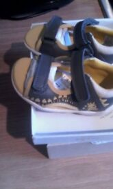 Clarks NEW toddlers shoes 4.5 dinosaur sandals *can post*