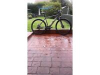 """20 """" ( 50cm) HE FOCUS CRATER LAKE CR 3 HYBRID BICYCLE"""