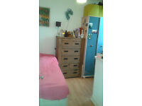 Singe room for rent in 3 person houseshare in M20