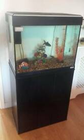Fish tank with filter