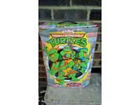 Teenage Mutant Ninja Turtles Collectors Case