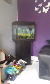 Black fish tank for sale