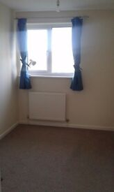 Cosy single bedroom to let