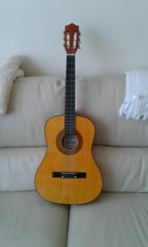 Herald HL34 Accoustic Guitar