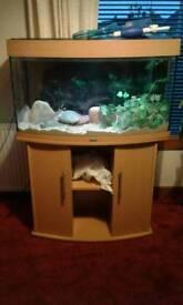 Jewel vision 180 fish tank