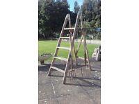 Vintage Wooden Ladder with Free Garden Forks