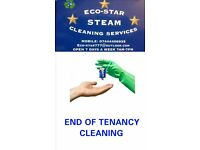 Eco-Star Steam Cleaning Services