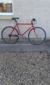 Men's red bike