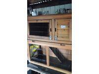 rabbit/ferret/guinea pig hutch