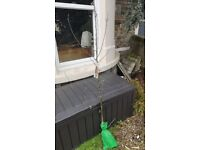 Apple Tree - Cox's Orange Pippin - Ready to Plant - £25 - Free Delivery (Bristol & some South Glous)