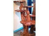Large Display Tree
