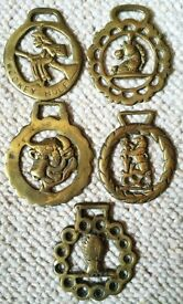 ANTIQUE HEAVY HORSE BRASSES FROM TACK OR HARNESS AUTHENTIC SOLID BRASS VINTAGE RARE EQUESTRIAN FARM