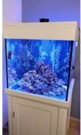 AQUA ONE MARINE TANK 275 liters