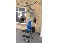 Ringmaster Home-gym - chest, shoulder, pec/dec, legs, high and low pulleys