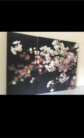 Beautiful 3 pieces canvas - only £19