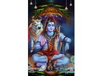 Best Indian Astrologer Blackmagic Removel Love Spells any issues solve with in 9 days