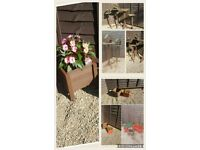 PLANTERS BIRD TABLES GARDEN STORAGE LOG STORES ANYTHING MADE TO SUIT YOU !!