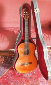 Alhambra 6P classical guitar & hard case