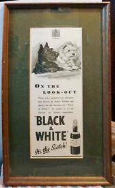 "c1942 Advertisement of ""Black n White"" Whisky in good frame"