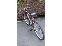 very expensive top quality Raleigh nitro red & black unisex 10 gear mountain bike selling very cheap