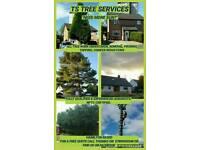 TS TREE SERVICES ( tree surgeon / arborists)
