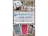 Chemo Clean Professional Carpet/Upholstery Cleaner