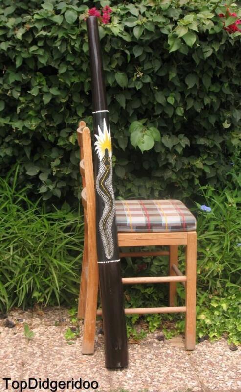 "47""120cm DIDGERIDOO+Bag+Beeswax Mouthpiece Teak Wood SNAKE Artwork Handpaint"