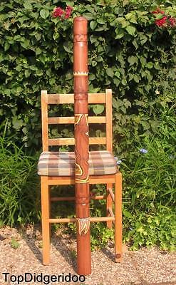 "47""120cm Aboriginal DIDGERIDOO Lizard Hand-Carved Dot-Painted Art +Bag +BeesWax"