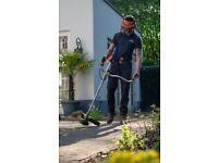 Hedge trimmer, garden maintenance, tree surgeon, grass cutting