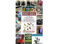 Dromore Cage & Aviary Bird Sale